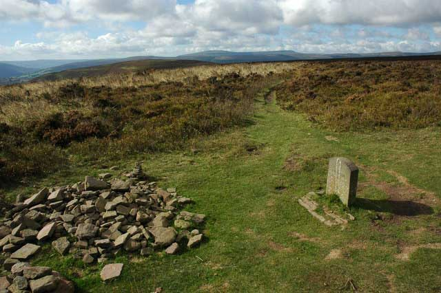Hatterall Hill